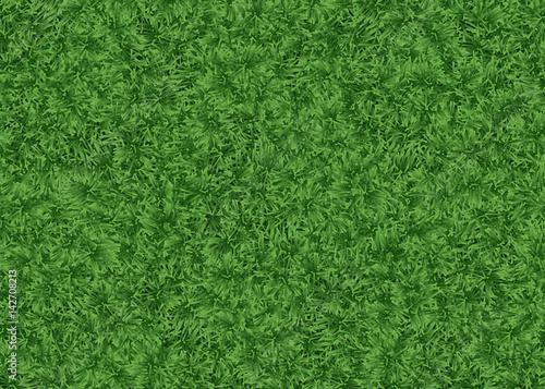 Canvas Print Fond herbe - gazon - pelouse - football - terrain - golf