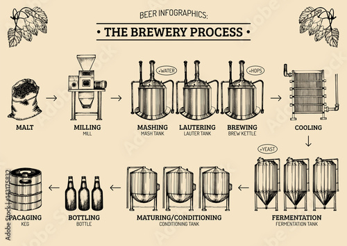 Foto Vector beer infographics with illustrations of brewery process