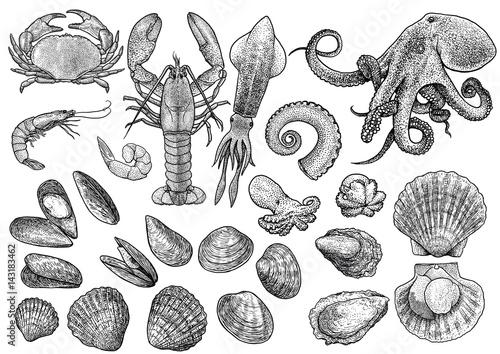 Seafood, shrimp, prawn, crab, lobster, squid, octopus, mussels, scallop, clam, o Tapéta, Fotótapéta