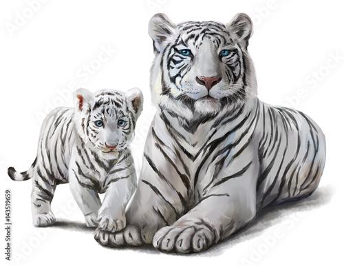 Wallpaper Mural White tigers watercolor painting