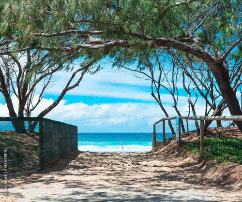 The view on ocean trough the beach entrance with wood fence and trees arch in Gold Coast, Australia