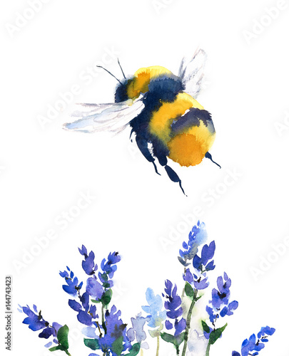 Carta da parati Bumblebee Flying Over Blue Flowers Watercolor  Hand Painted Summer Illustration