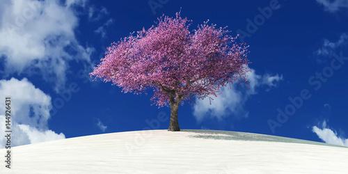 Plakat Drzewo na pustyni