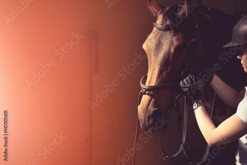 Woman fixing horse bridle Fototapeta