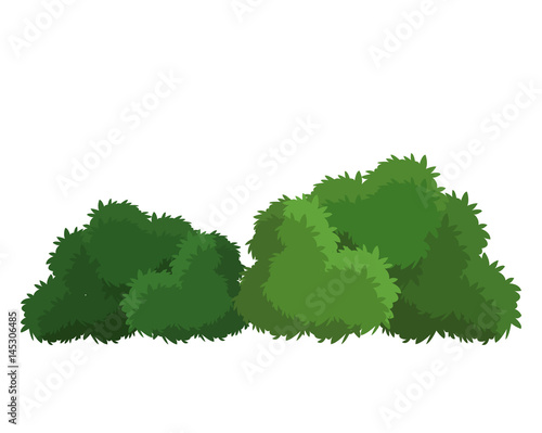 bushes natural wild image vector illustration eps 10 Poster Mural XXL