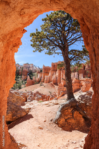 Foto Rock window, Peek-A-Boo Trail, Bryce Canyon