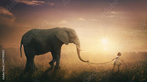 Fototapeta premium Słoń szedł obok dziecka