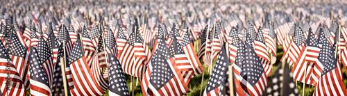 Fotografie, Obraz Memorial Day tribute