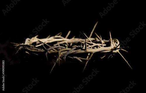 Stampa su Tela Crown of Thorns