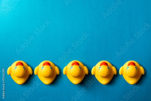 Carta da parati Yellow rubber ducks organized on blue background.