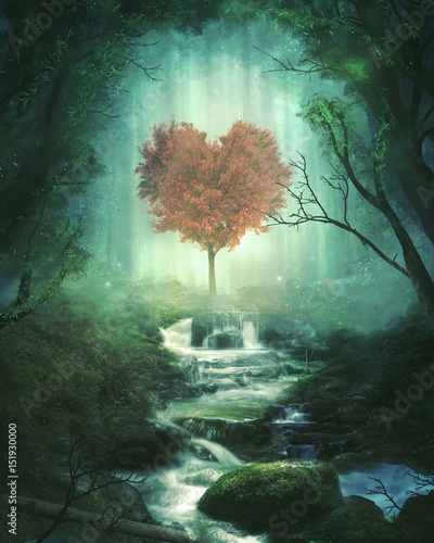 Heart tree in the forest