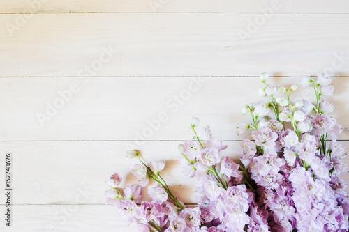 Canvas Print Delphinium flowers on a light wooden background
