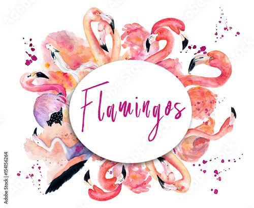 Photo round frame with pink flamingo