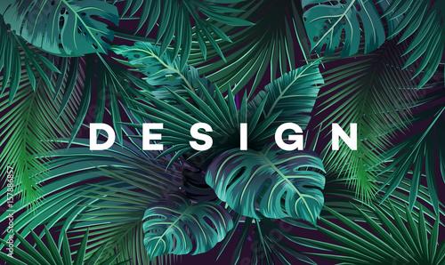 Jasne tło tropikalne z roślin dżungli. Egzotyczny wzór z liści palmowych.