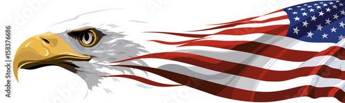 Fotografia The national symbol of the USA