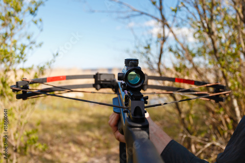 Wallpaper Mural A crossbow with a sight to aim in first person on the background of the lake