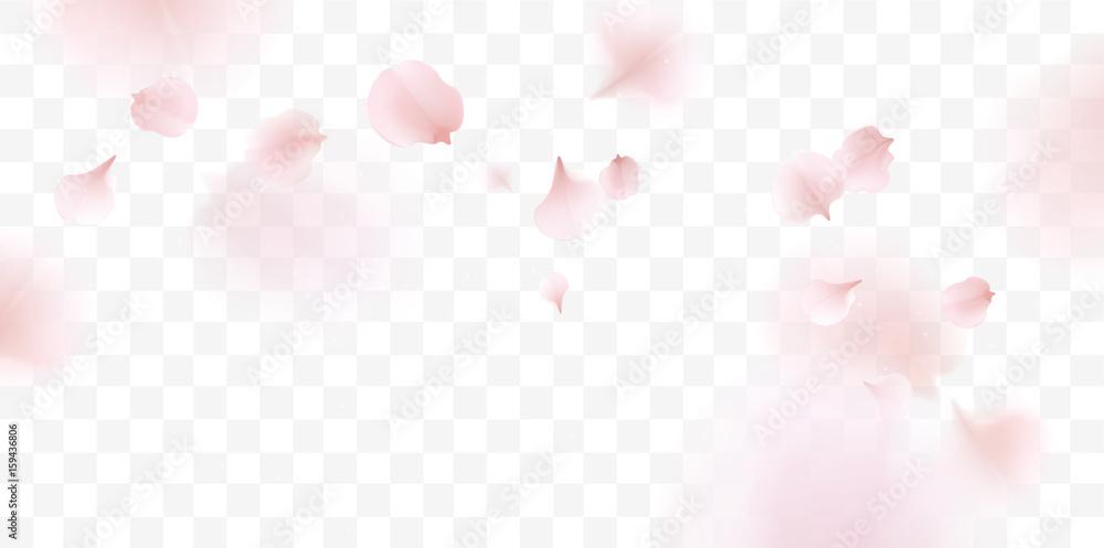 Różowi Sakura płatki spada tło <span>plik: #159436806   autor: Premium_art</span>