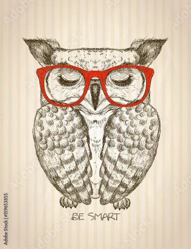 z-hipster-sowa-ubrana-w-czerwone-okulary