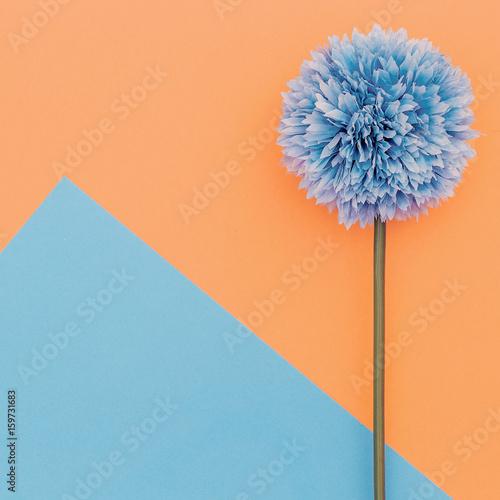 Naklejka na szafę Kwiat na tle geometrii - Minimalistyczny design