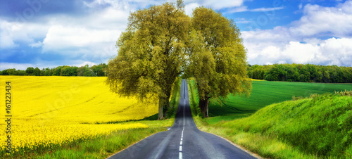beautiful countryside of France. Blooming yellow fields in may