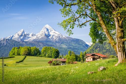 Obraz na plátne Mountain landscape in the alps in summer with Watzmann, Bavaria, Germany