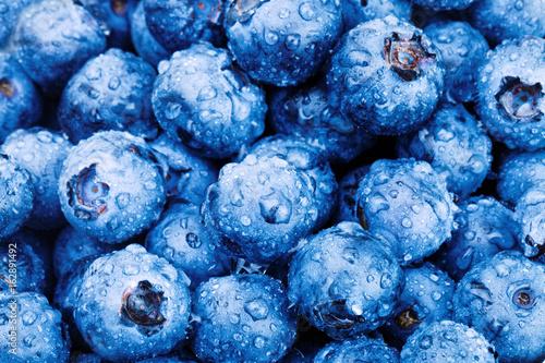Bunch of fresh blueberries - close up studio shot