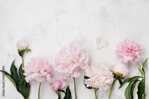 Beautiful pink peony flowers on white stone table with copy space for your text top view and flat lay style.