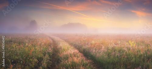 Bright sunrise on autumn meadow