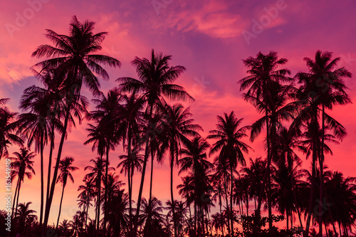 Stampa su Tela Silhouette of coconut trees against dramatic red sunset sky background