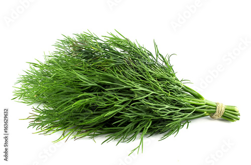 Photo bunch fresh, green dill on a white background