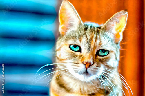 Cyfrowy obraz małego kota alarmowego