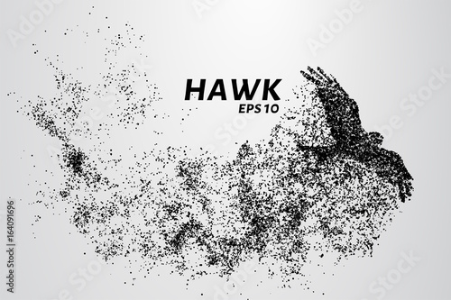 Canvas-taulu Hawk of the particles