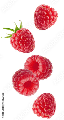 Isolated flying berries. Falling raspberry fruits isolated on white background with clipping path