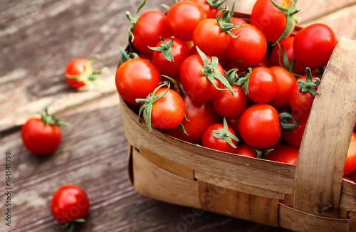 Fotografie, Obraz basket harvest fresh tomato