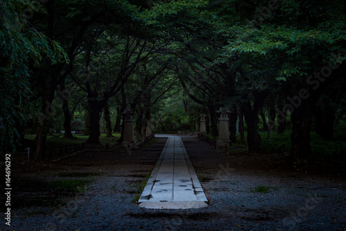 Canvas Print 神社の道,  The shrine in silence in Japan