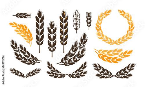 Fényképezés Ear wheat, bread logo or label