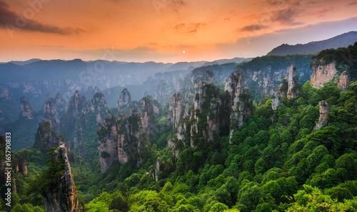 Fotografie, Obraz Zhangjiajie National forest park at sunset, Wulingyuan, Hunan, China