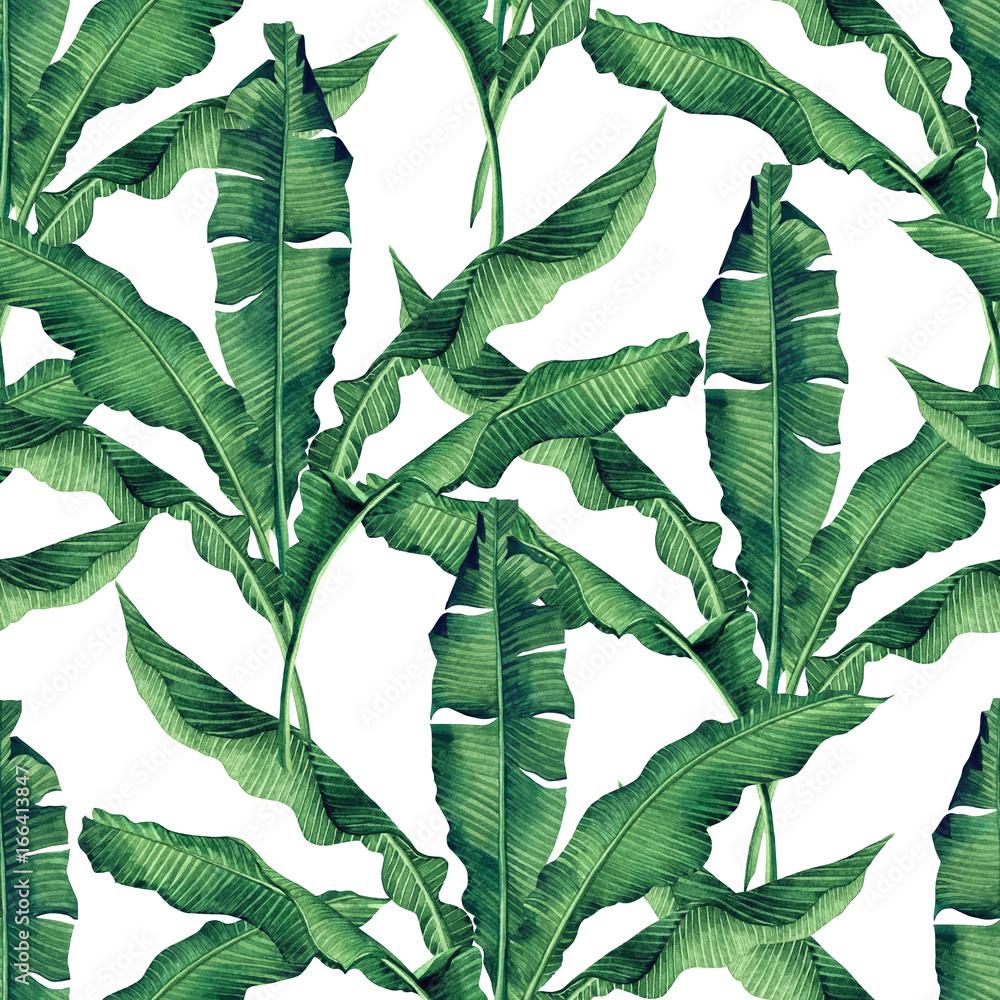 Fototapeta zielona bananowce stylu akwareli styl kolonialny