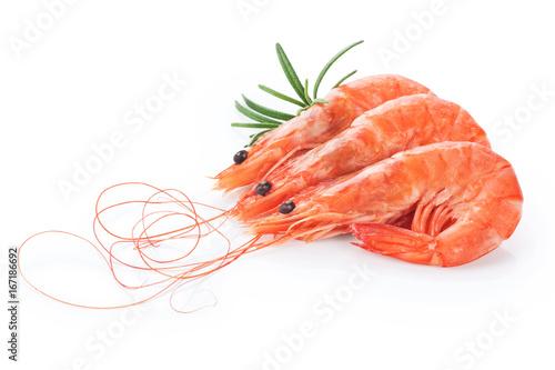 Fresh cooked shrimp isolated on white background.