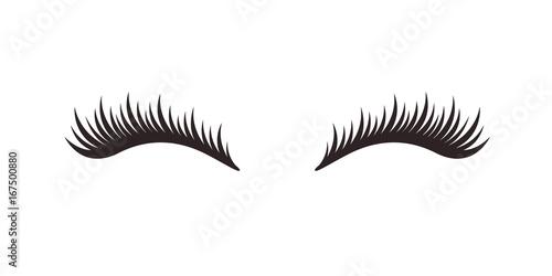 Obraz na płótnie Eyelashes on white background, vector illustration.