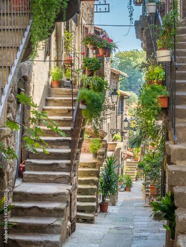 Fototapeta premium Malowniczy widok w Vitorchiano, prowincja Viterbo, Lacjum, środkowe Włochy.