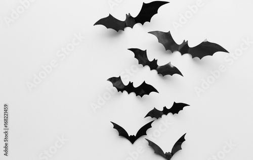 Leinwand Poster halloween decoration of bats over white background