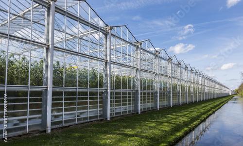 Valokuva Tomato Greenhouse Harmelen with Ditch