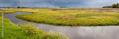 Canvas Print Approaching storm over the Marshes on the Florida Gulf coast