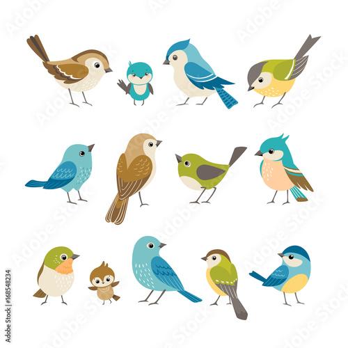 Set śliczni mali kolorowi ptaki odizolowywający na białym tle