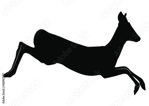 Canvas Print Vector silhouette of Roe Deer doe jump.