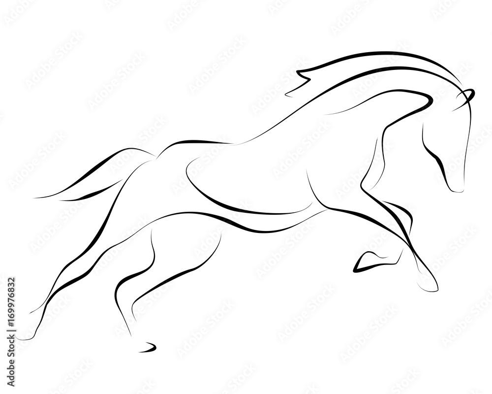 Działający czerni linii koń na białym tle. Grafika wektorowa. <span>plik: #169976832   autor: Nadya</span>