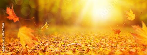Fototapeta premium Abstrakcjonistyczny jesieni tło
