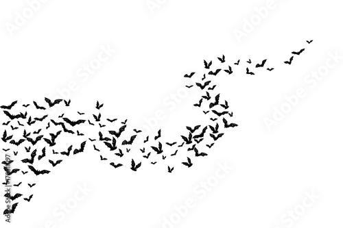 Halloween flying bats Fototapete