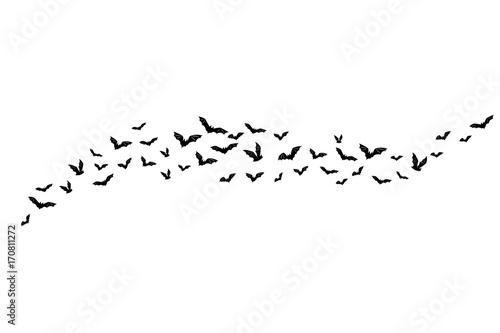 Foto Halloween flying bats